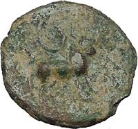 CASTULO Spain 2nd Century BC Male Bull Authentic Ancient Greek Coin  i46502