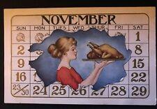 November Calendar Border & Lady Holding Turkey 1910 Thanksgiving Postcard-c-344