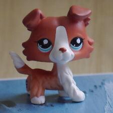 Brown Collie Dog pubby Blue eyes # LITTLEST PET SHOP LPS mini Action Figure