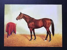"Citation Photo Horse Racing 14"" x 10"" 1948 Kentucky Derby"