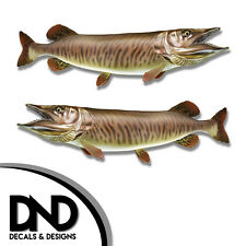 """Tiger Musky - Fish Decal Fishing Tackle Box Bumper Sticker """"5in SET"""" F-0880 D&"""