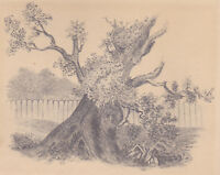 Fine mid 19thC Master Pencil Drawing: Oak Tree Study, Hudson River School Era