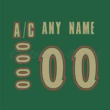 Minnesota Wild 2003-07 Green Jersey Customized Number Kit un-stitched