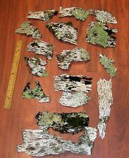 New listing 15 Birch Bark Pieces with Lichens and Moss Crafts