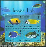 MONTSERRAT 2014  TROPICAL FISH  SHEET  MINT NH