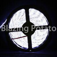 LumenWave 5M 5630 IP65 Waterproof Flexible 300 LED Strip Lights -White PCB-White