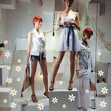 adesivi vetrine fiori margherite negozi vetrofanie stickers estate primavera