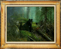 Michael Coleman Original Oil Painting on Board Signed Black Bear Wildlife Animal