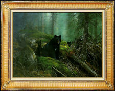 Michael Coleman Original Oil Painting on Board Signed Black Bear Wildlife Animal