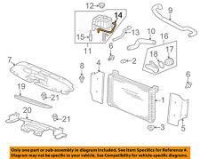 GM OEM Radiator-Outlet Lower Hose 15792821