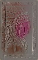 Native Americana~Indian Chief~Oldest Inhabitant~Bronze Red Airbrushed~Emboss~'08