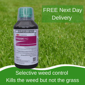 STRONG PADDOCK WEED KILLER GRAZON PRO SAFE TO GRASS KILLS DOCKS THISTLES NETTLES