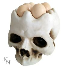 EGG HOLDER HOLDS 6 EGGS SKULL GOTHIC NOVELTY NEW AND BOXED GOTHIC KITCHEN