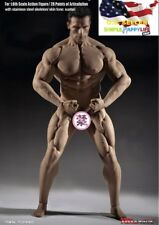 NEW TBLeague Phicen M35 1/6 scale Male Seamless Super Muscular Body❶US IN STOCK❶