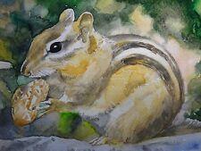 Watercolor Painting Chipmunk Nut Peanut Nature Art 5x7