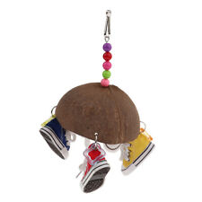 Attract Pet's Attention CoConut With Colorful Beads Sneakers Birds Chew Toy
