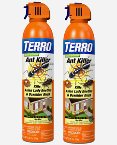 2 Terro ANT KILLER Outdoor Spray Box Elder Asian Lady Beetles 19oz T1700-6