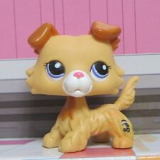 Littlest Pet Shop Animal LPS Figure Toy #2452 Golden Yellow Blue Eyes Collie Dog