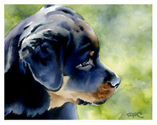 """ROTTWEILER PUPPY"" Watercolor Dog ART Print Signed by Artist DJR"