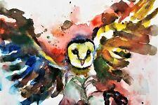 Barn Owl Poster Painting - Watercolor Art Print Wall Animal Bird Wildlife 8X10