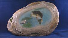 New listing Bass Fish stone