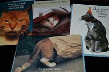 Lot of 4 Cat Feline Photo Greeting cards BELATED BIRTHDAY NO PRESENT Cat in Bag