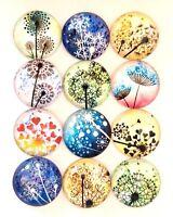 20 DANDELION SEED HEADS GLASS CABOCHONS 12MM-FLATBACK ROUND CABOCHON-BLUE FLOWER