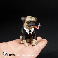 ASTOYS AS032 1/6 Simulation Pug Puppy Dog & Cigar Animal Model F 12'' Figure Dol