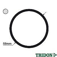 TRIDON Gasket For Ford F250 - F350 RM - RN 08/01-09/07 5.4L