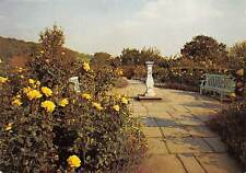 Chartwell Westerham The Golden Rose Walk The National Trust
