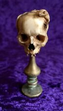 Antique Memento Mori Carved Half Skull & Lizard On Round Bronze Ornate Base