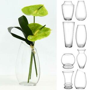 SECONDS Clear Glass Flower Vase Bouquet Display Bud Cocoon Posy Globe 18-35cm