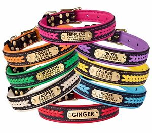 Leather Dog Collar Personalised Braided Brass Hardware Soft Padded Small Large