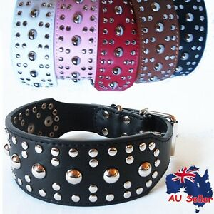 Genuine Real Leather Round Studded Riverts Pet Collar for Large Dogs