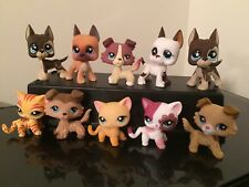 Littlest Pet Shop Great Dane Dog #577 LPS Collie Dog Cat #339 3 Random FREE SHIP