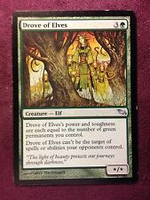 Drove of Elves    Shadowmoor   VO  MTG PLAYED (see scan)