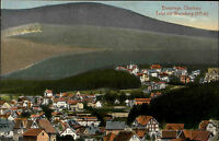 BRAUNLAGE AK um 1910 Parite mit Würmberg und Totalansicht Häuser Partie