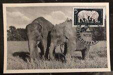 1956 East Berlin DDR Germany RPPC Maxi Postcard Cover Indian Elephant