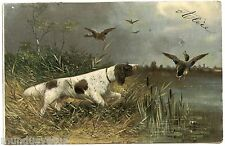 ILLUSTRATEUR MÜLLER .CHIEN DE CHASSE. CANARDS. HUNTING DOG. DUCKS