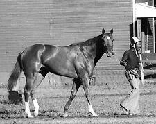 SECRETARIAT Belmont Stakes Black & White Racing 8X10 PHOTO CHARLIE DAVIS