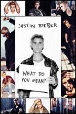 Justin Bieber : Grid - Maxi Poster 61cm x 91.5cm (new & sealed)