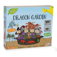 Pousser & Décore Votre Propre Dragon Jardin Plante & Paint Enfants Jouet Jeu