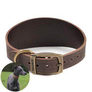 GENUINE ANCOL WIDE GREYHOUND COLLAR Sighthound Dog Non Slip Adjustable Buckle UK