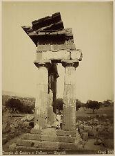 Giovanni Crupi: tempio di Castore, ragazzo in toga. SCONTO Ernst Haeckel