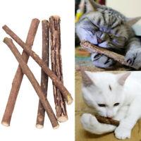 10X Organic Silver Vine Catnip Alternative Cat Snacks Chew Stick Molar Brush Toy