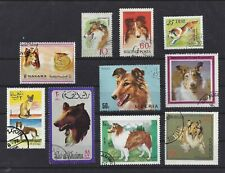 Dog Postage Stamp Collection Art Photo Head Studies Rough Coated Collie 10 x Cto