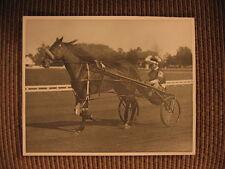 "Standardbred Race Horse ""Winnipeg"" & driver Septimus (Sep) Palin Vintage Photo"