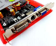 NEW NVIDIA GeForce DDR 256MB FX 5500 8x AGP VGA Video Graphic Card /w DVI TV Ou