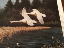 Don Eckelberry ( Trumpeter Swans of Grande Prairie ) signed lithograph priint
