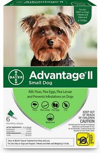 Advantage II For Small Dogs 3-10 lbs, 6 Packs - Free Shipping